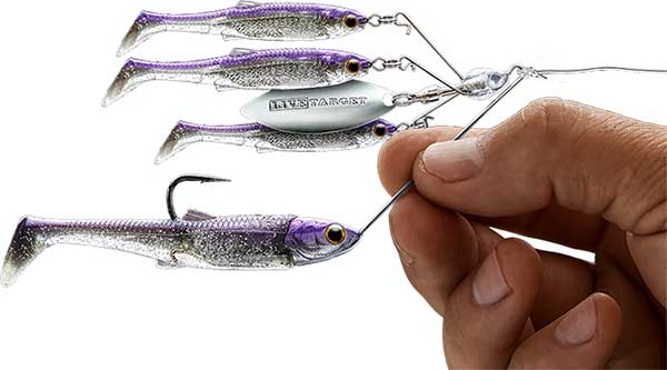 Live Target Spinner Rig Offers Unique A-rig Presentation