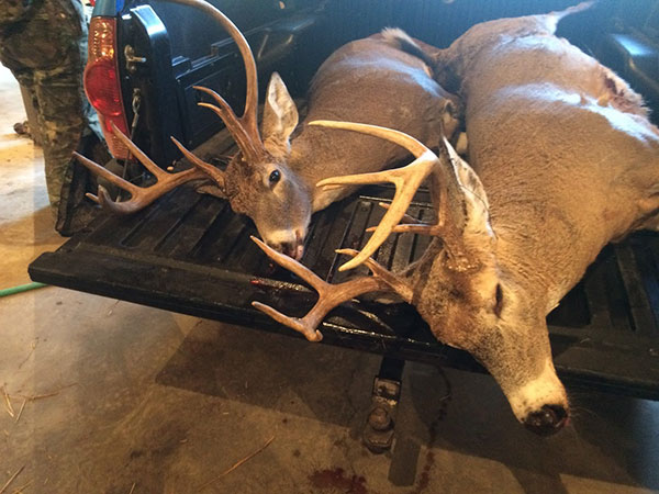 Need Deer Hunting Fix Four Mature Bucks Shot In Small