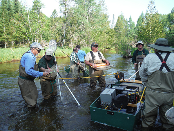 What Happened to the Au Sable North Branch Trout Population?