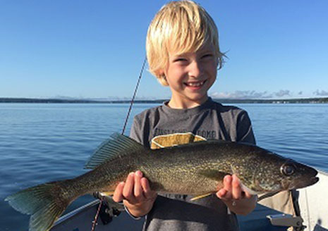 Michigan Develops Walleye Plan; Seeks Angler Input