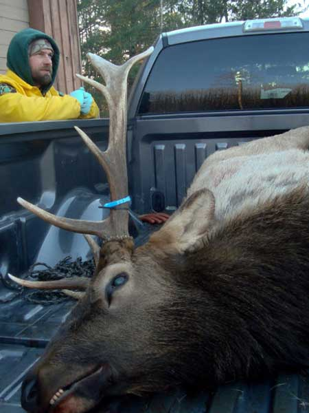 DNR technician Mark Monroe talks with a successful elk hunter at a check station.