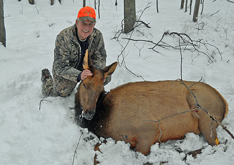 Second Michigan Elk Hunt Huge Success; 88% of Hunters Score Kills