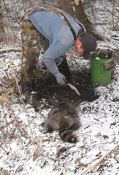 Michigan's Trapping Tradition, a Challenging, Time-Honored Pursuit