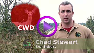 Chronic Wasting Disease (CWD) - MI Hunter Info