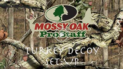Turkey Decoy Setup
