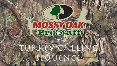 Turkey Calling Sequence