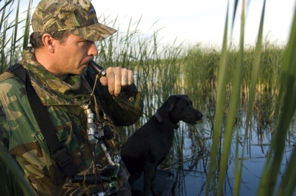 Goose Season Prospects Look Good; Ducks are Down