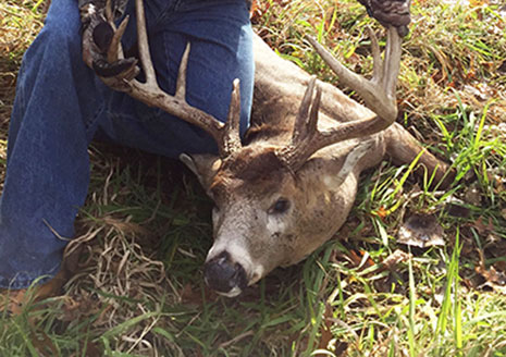 Patience Pays Off with Big 12-Pointer